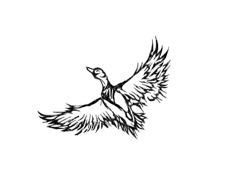 Tribal Flying Duck Tattoo Design