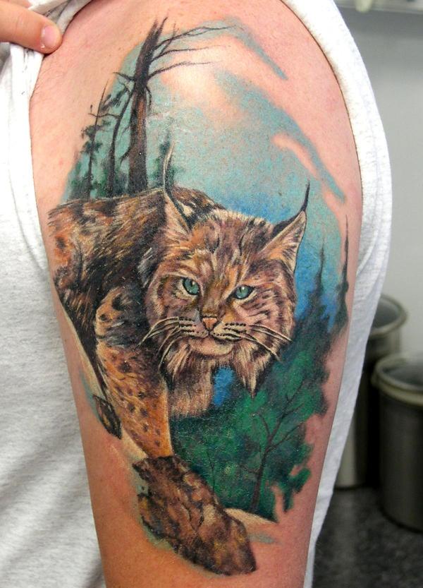 best colored lynx tattoo on shoulder. Black Bedroom Furniture Sets. Home Design Ideas