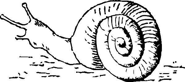 Outline Grey Ink Snail Tattoo Design