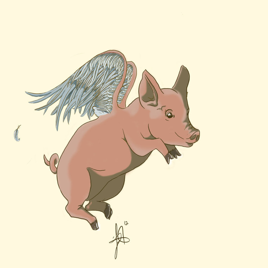 Awesome Flying Pig Tattoo DesignFlying Pig Tattoo Designs