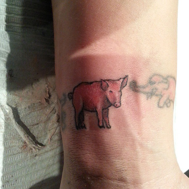 Pink Ink Elephant And Pig