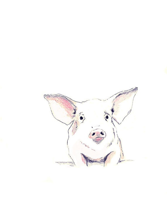 Tattooed pigs 11 pictures to pin on pinterest tattooskid for Tattoo practice pig skin