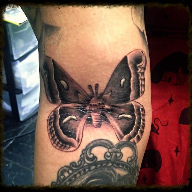 Moth Tattoo Images & Designs
