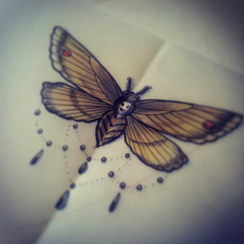 Infinity Tattoos With Butterflies Moth Tattoo Images &am...