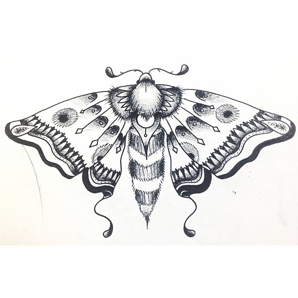 Moth Tattoo Images &am...