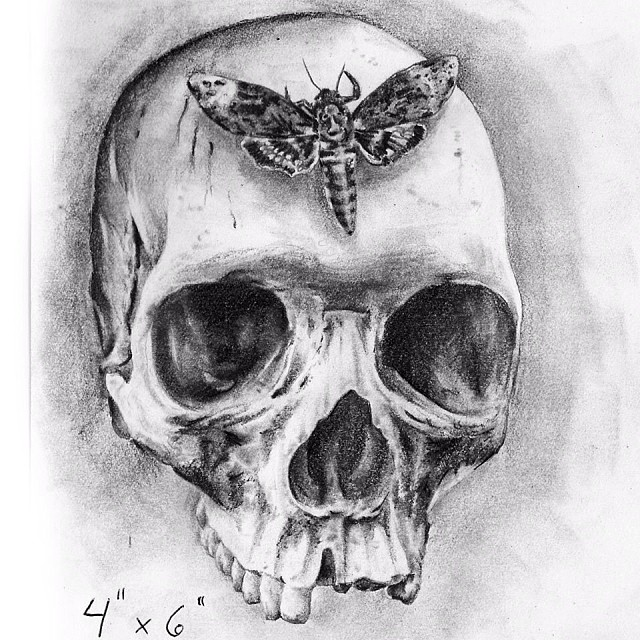 Moth Tattoo Images Amp Designs