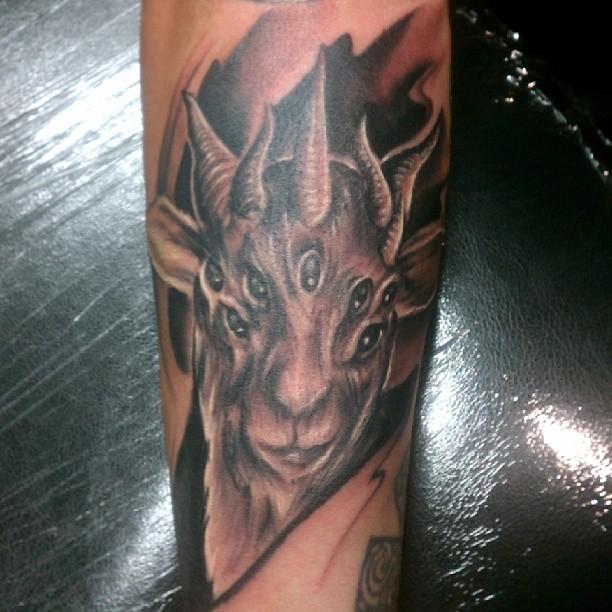 good grey ink goat head tattoo. Black Bedroom Furniture Sets. Home Design Ideas