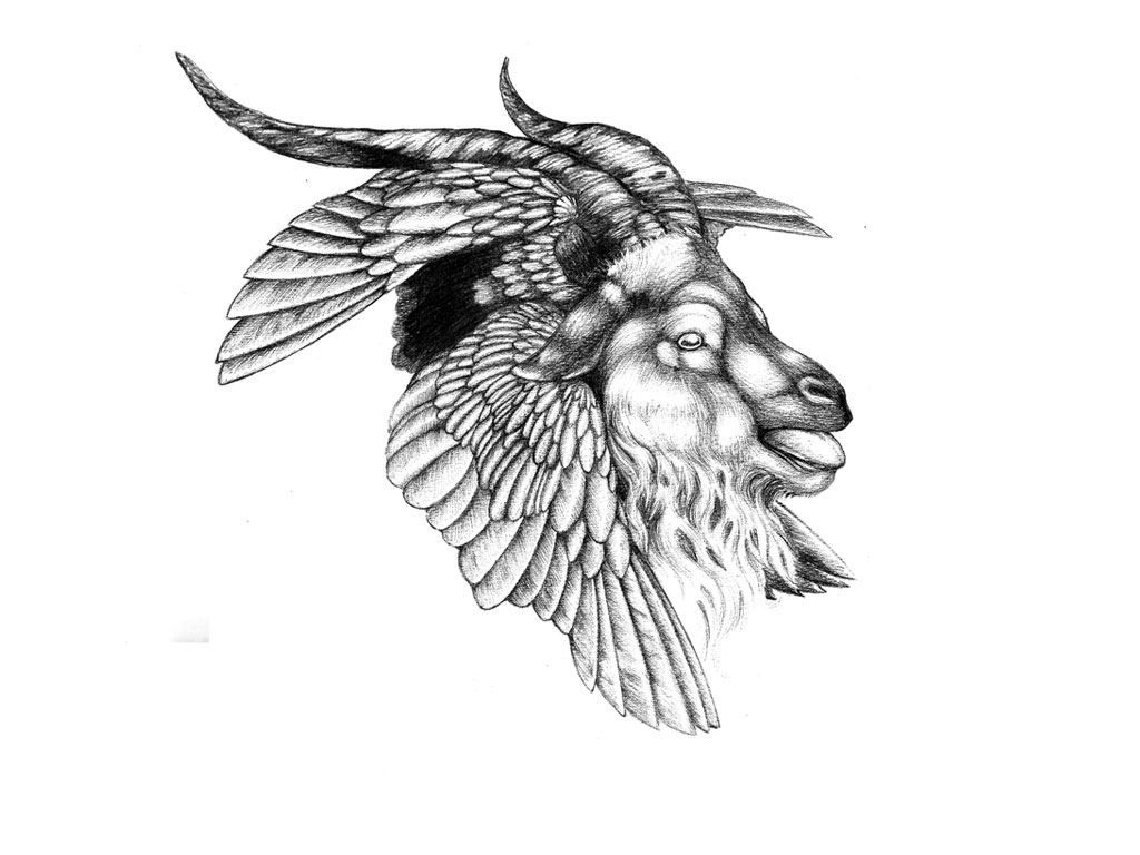 hawk and goat head tattoo design. Black Bedroom Furniture Sets. Home Design Ideas