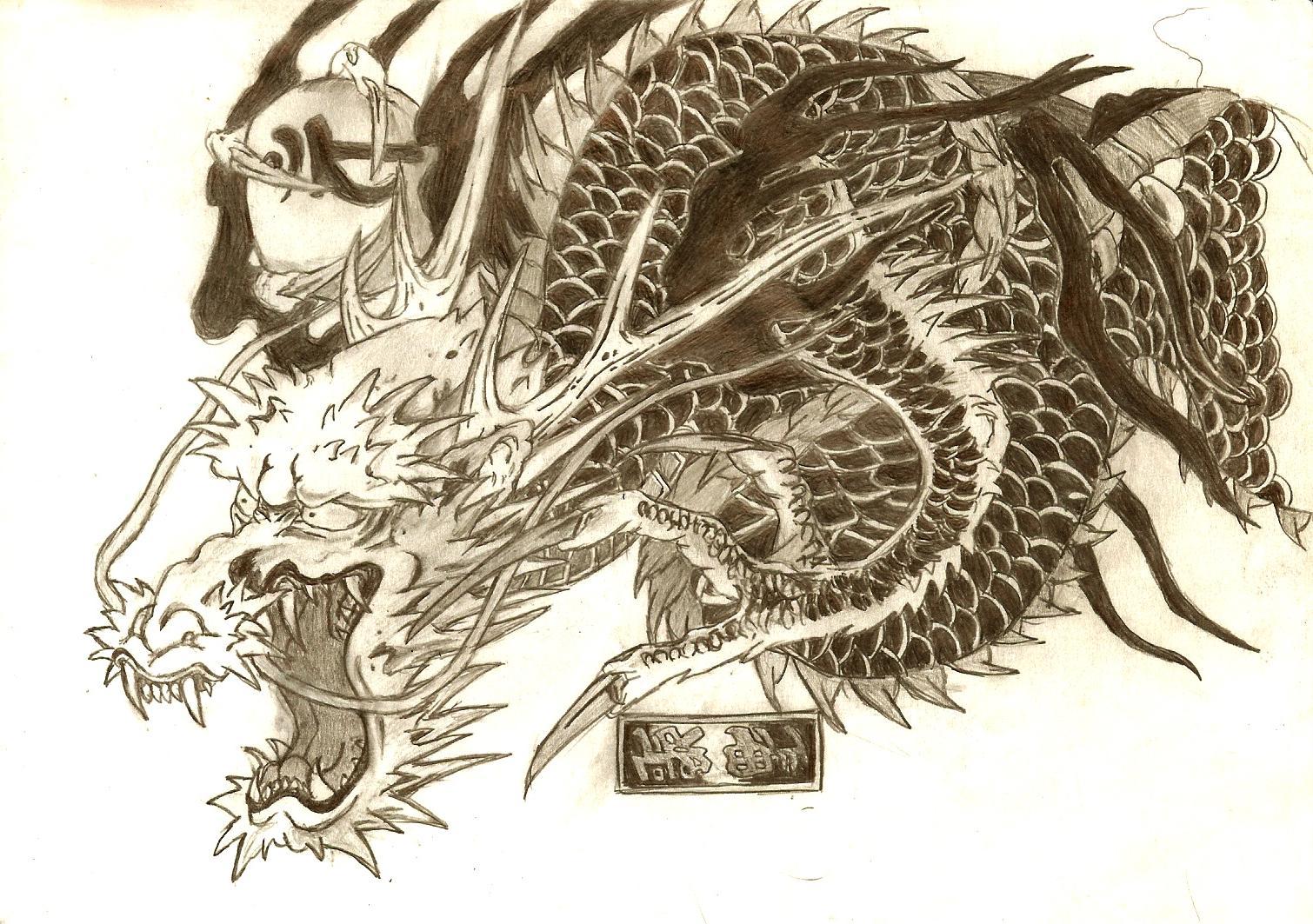 grey ink yakuza dragon tattoo design. Black Bedroom Furniture Sets. Home Design Ideas