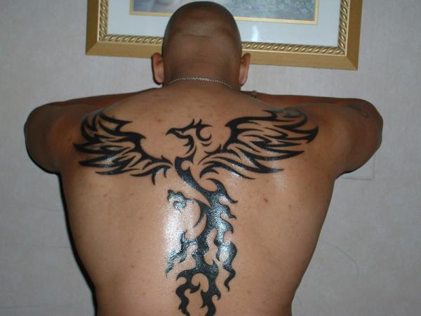 Black ink tribal bird tattoo on back for Black tribal tattoo ink
