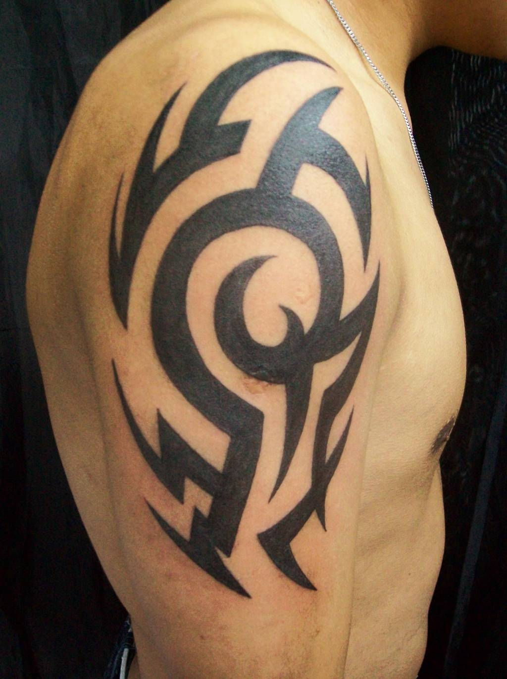 Tribal tattoos designs ideas page 65 for Tribal half sleeve tattoos
