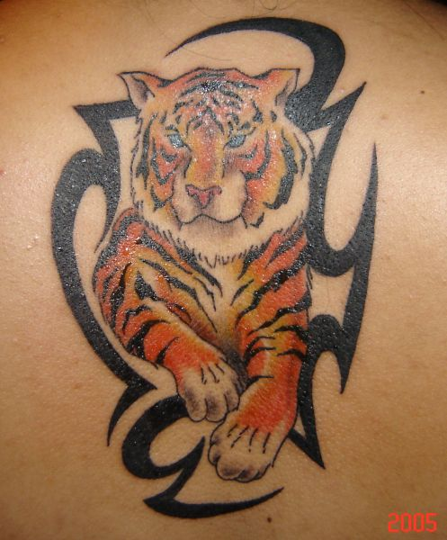 color ink tiger and black tribal tattoo. Black Bedroom Furniture Sets. Home Design Ideas