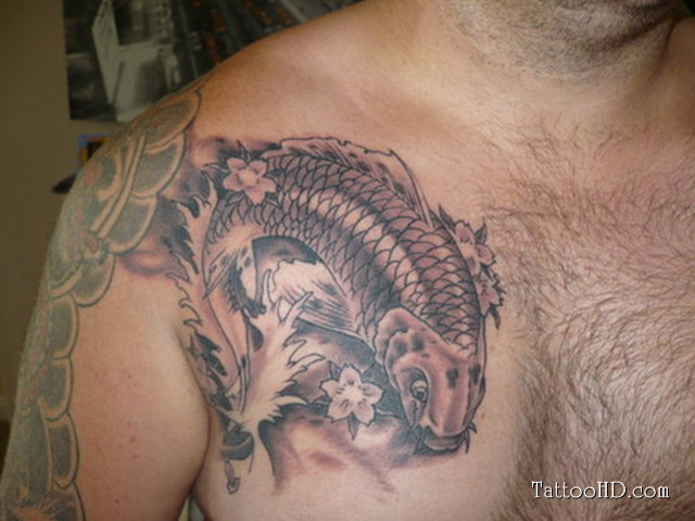 Koi Fish Chest Plate Tattoo Covering Scar: Grey Ink Koi Chest Tattoo For Men