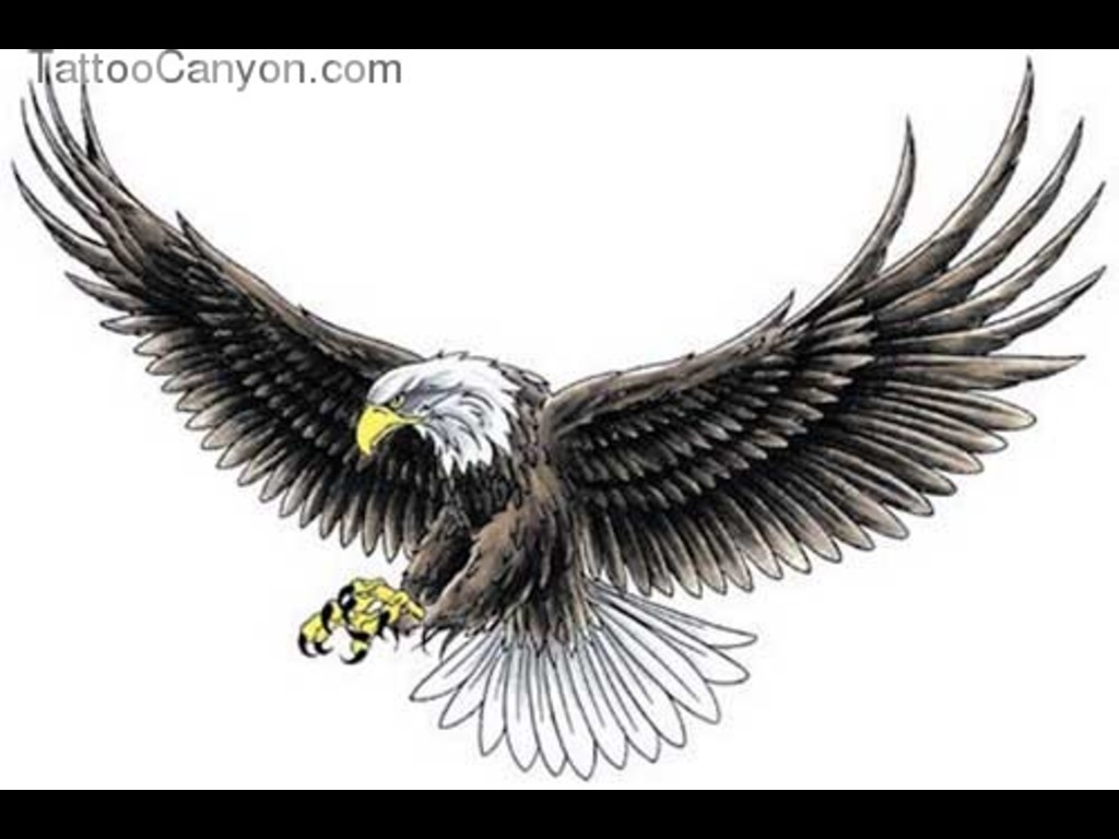 Open Large Wings Eagle Tattoo Design