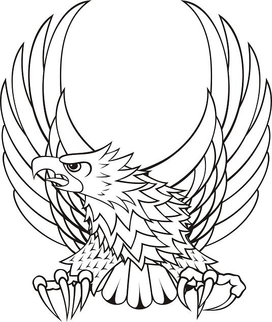 Assassin S Creed Tattoo Sizes 179620798 together with Phoenix Tattoo Ideas likewise All  ments likewise 70 additionally Clipart Angel Wing Transparent. on eagle crest designs