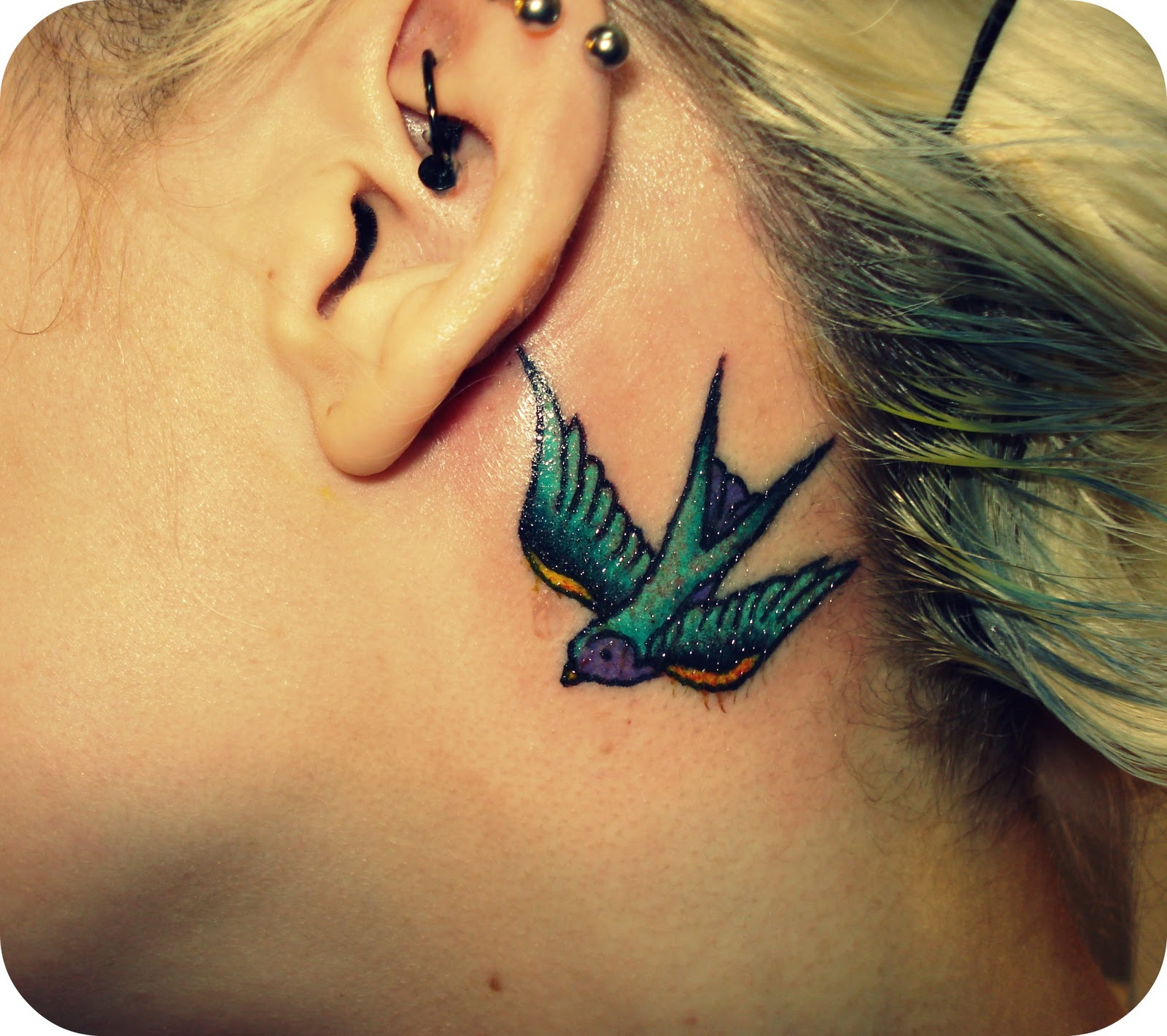 Dove Tattoos Behind The Ear: Blue Ink Flying Bird Back Ear Tattoo