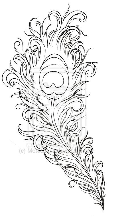 Amazing peacock feather tattoo design
