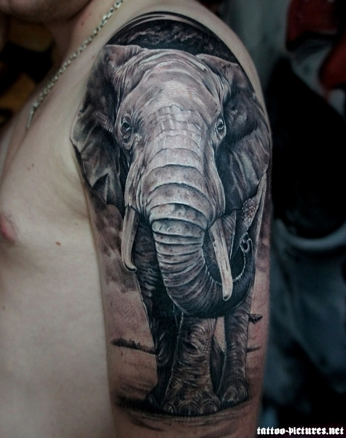 Grey Elephant Tattoo On Man Left Half Sleeve