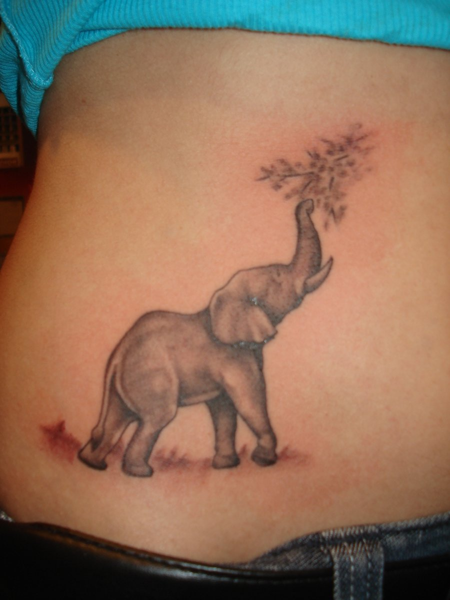 up trunk grey elephant tattoo on waist. Black Bedroom Furniture Sets. Home Design Ideas
