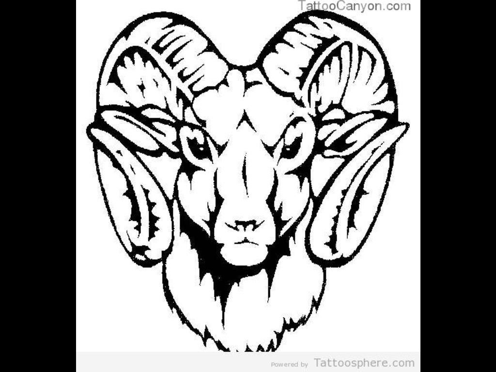 Awesome Goat Head Aries Tattoos Design