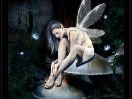 Twinkling Fairy Tattoo Design