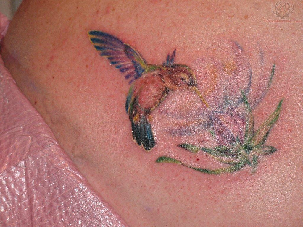 Color Hummingbird & Flower Tattoo