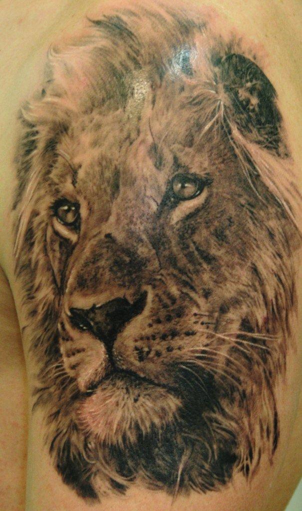 e4808593d Beautiful Left SHoulder Lion Tattoo