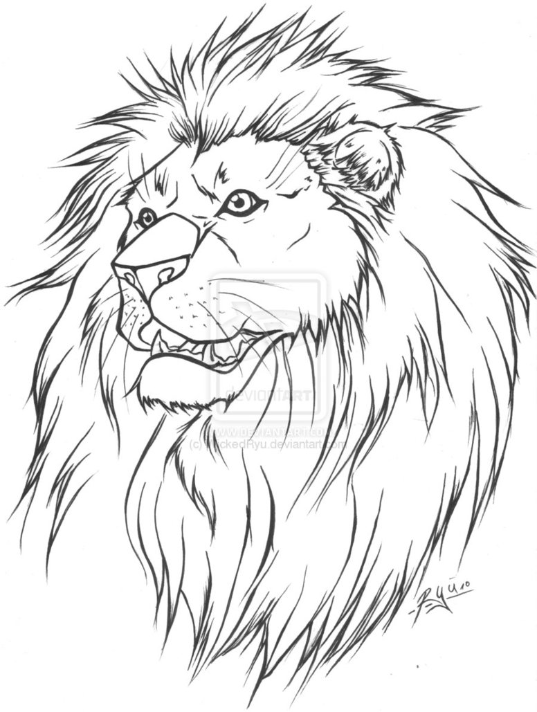 Beautiful Lion Tattoo Design