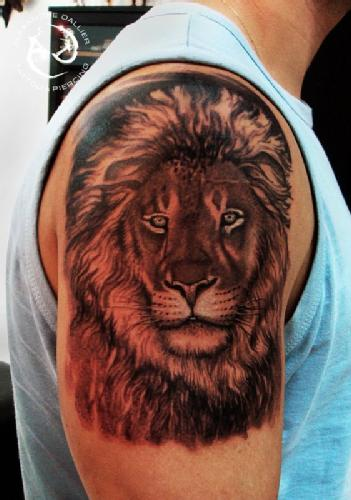 29725a649 Dread Lion Tattoo On Right Shoulder