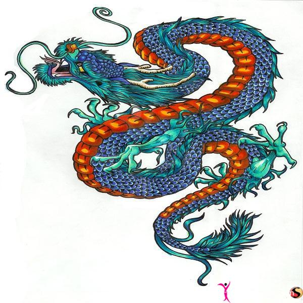 Dragon Tattoo Coloring Pages Colored Dragon Tattoo Design
