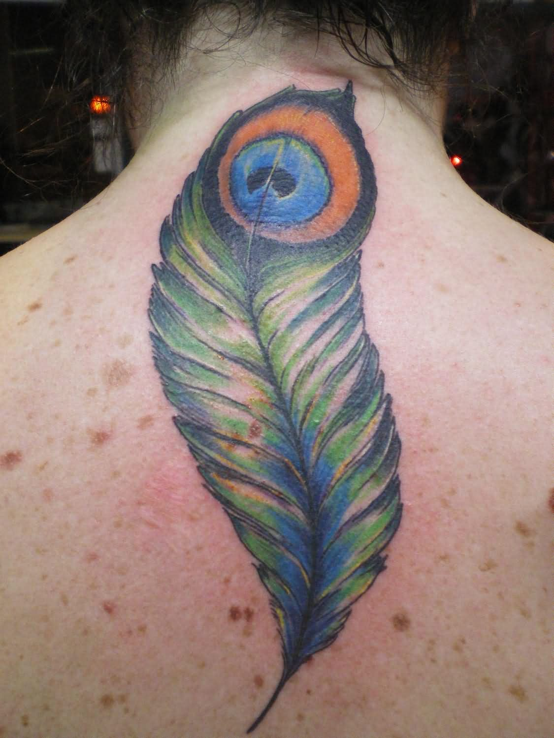 Peacock Feather Tattoo For Back