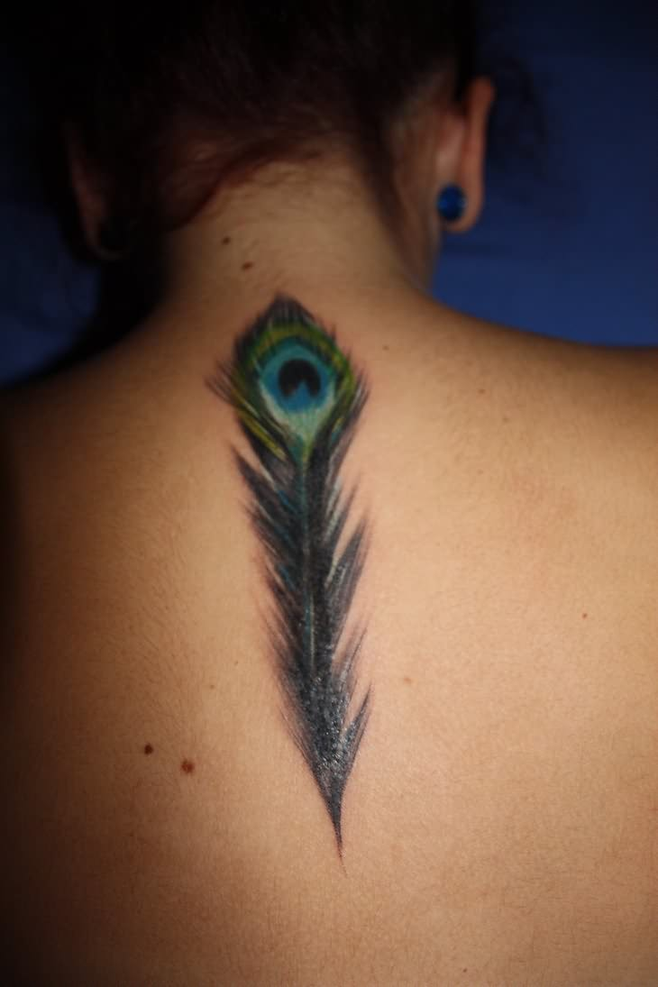Peacock Feather Tattoo On Men's Back