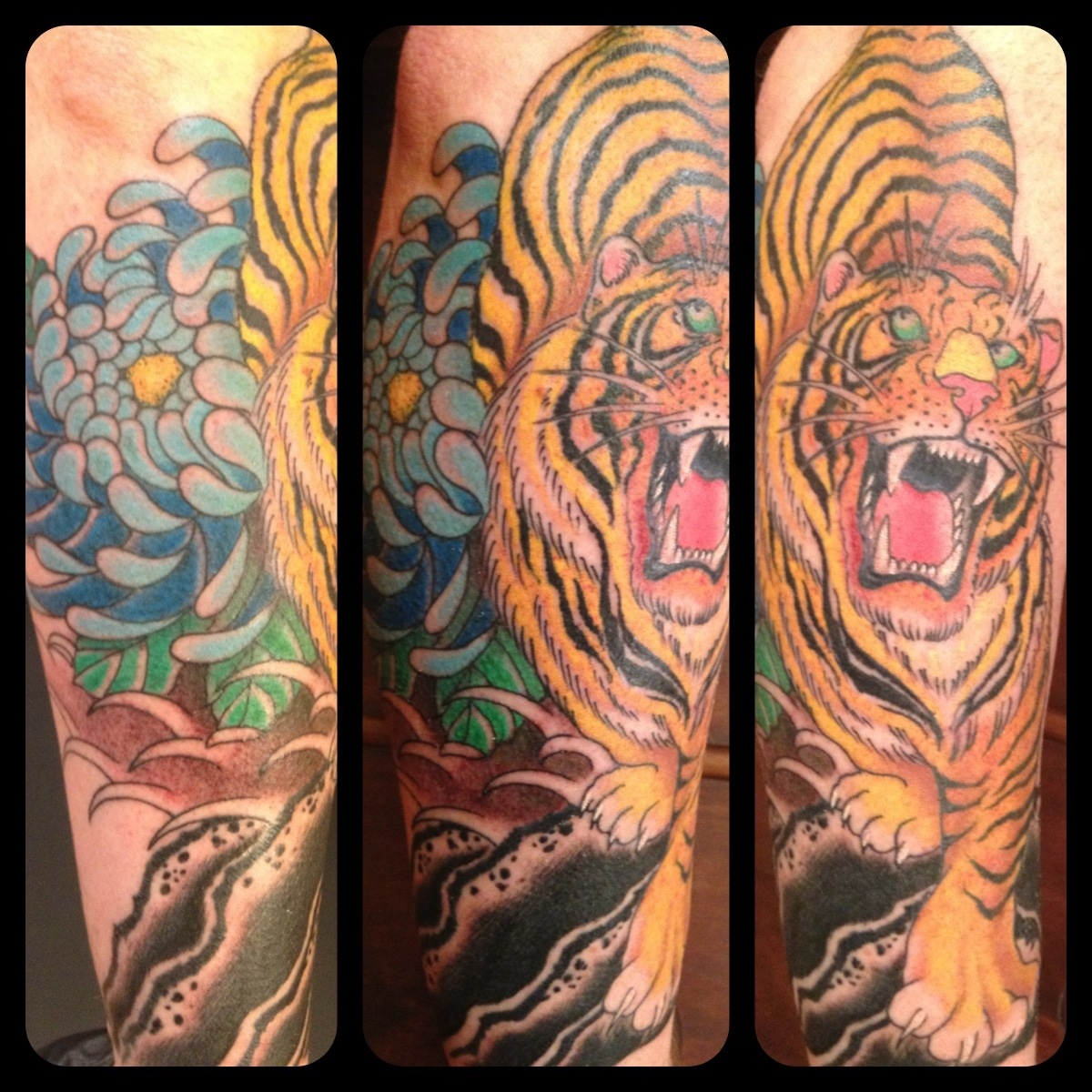 Tiger And Dragon Tattoo Arm Angry Tiger And Dragon Tattoo