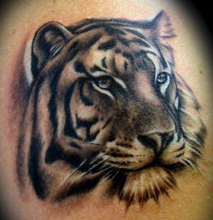 Tiger tattoo images designs for White tiger tattoo
