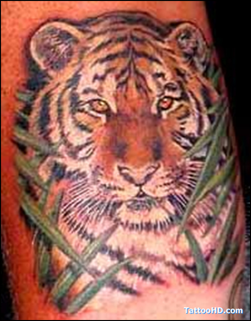 Awful Color Ink Tiger Head Tattoo
