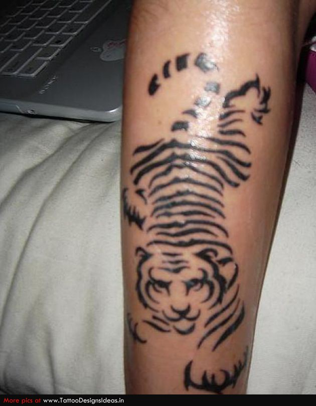 Black ink tribal tiger tattoo on arm for Black tribal tattoo ink