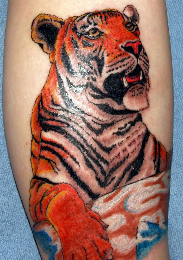 4e6f32046 Colorful Tiger Tattoo For Guys