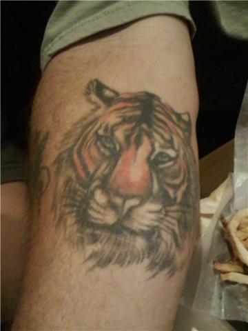 Grey Ink Tiger Head Tattoo On Arm