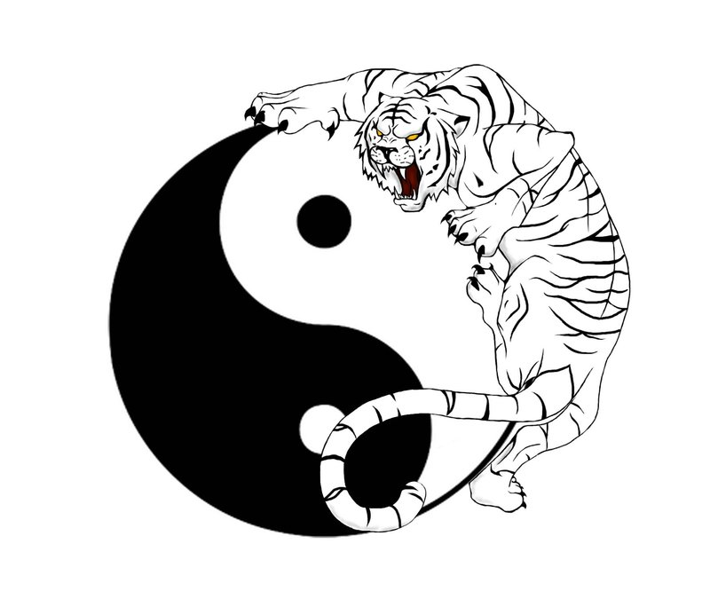Latest Yin Yang And Tiger Tattoo Design
