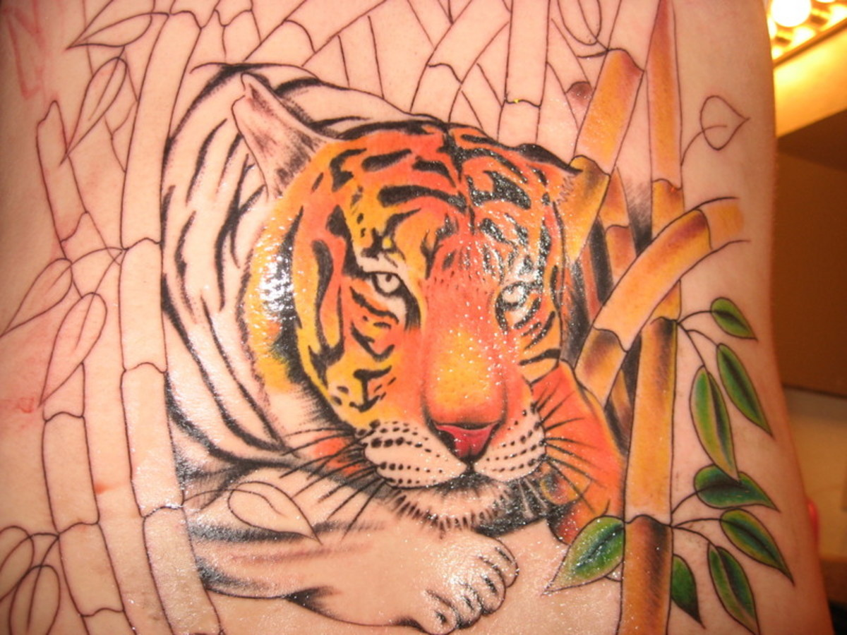 Tiger With Bamboo Tree Tattoo