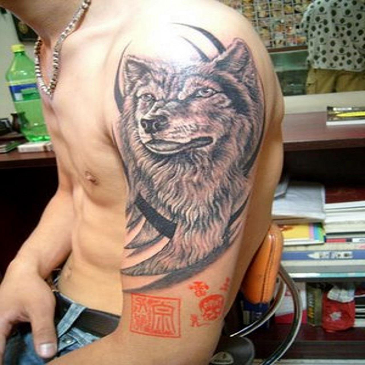 Wolf Tattoo Images Amp Designs border=