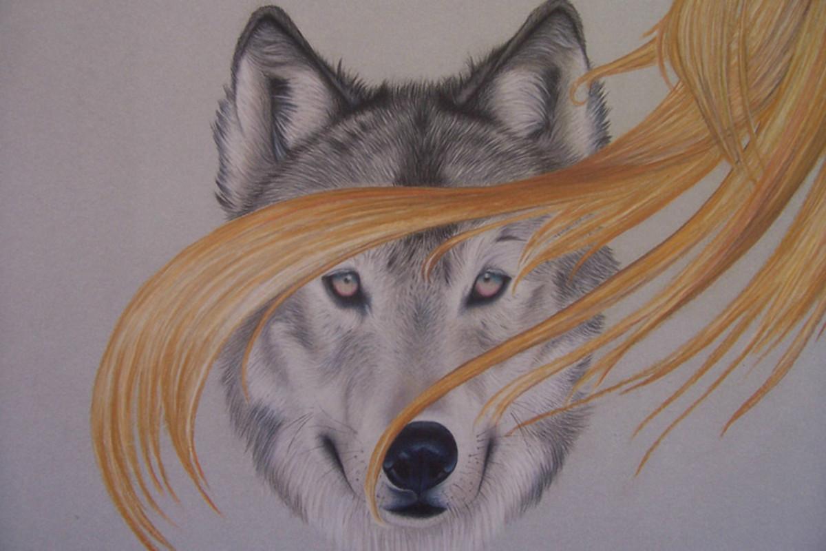 a952a8d90c59d Crazy Grey Ink Wolf Tattoo Design