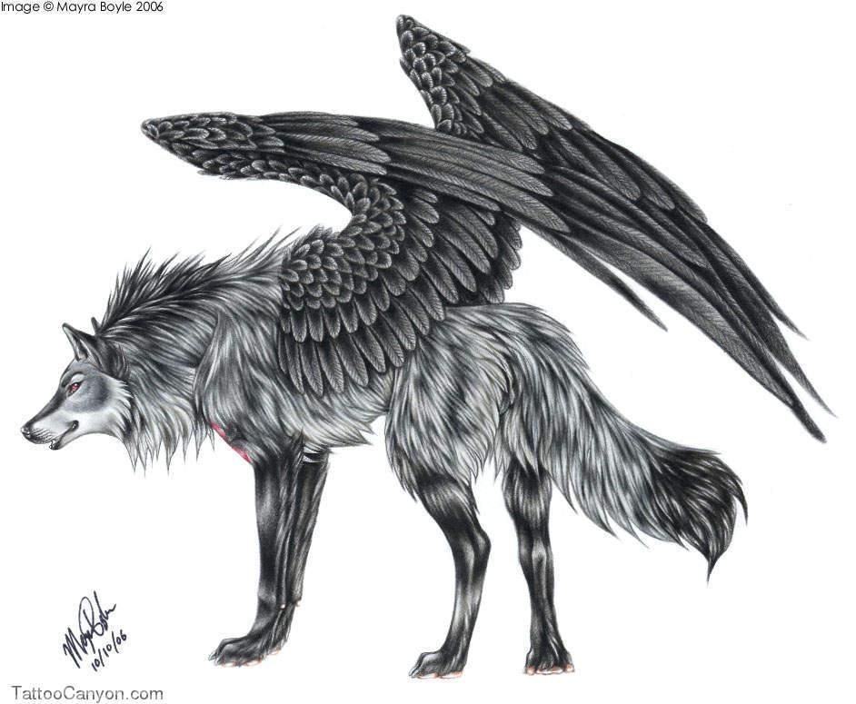 grey ink winged wolf tattoo design. Black Bedroom Furniture Sets. Home Design Ideas