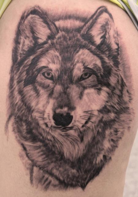 Wolf tattoo images designs for Wolf head dreamcatcher tattoo