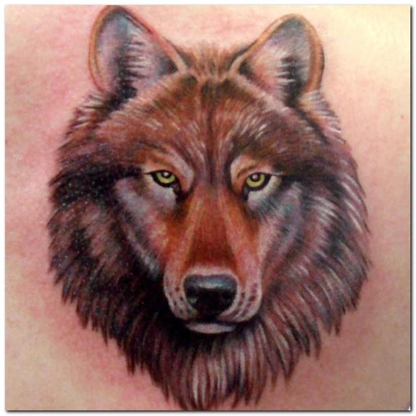 Latest Brown Ink Wolf Head Tattoo