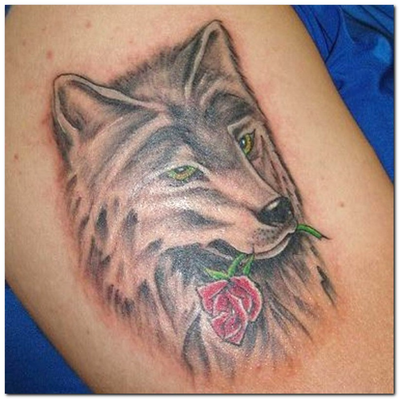 Wolf tattoo images designs for Red wolf tattoo