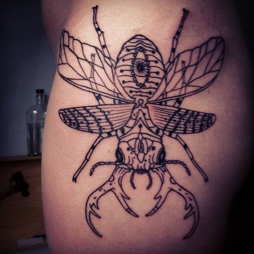 Grey Ink Beetle Tattoo...