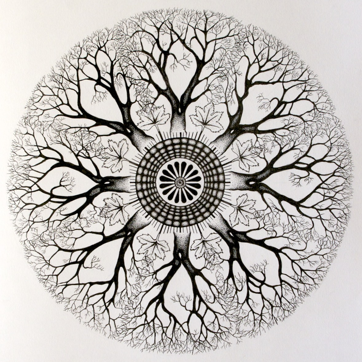 Gallery For gt Tree Mandala Designs