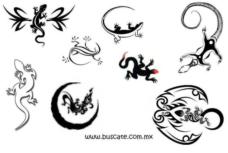 Lola Volcan Salamander Tattoo