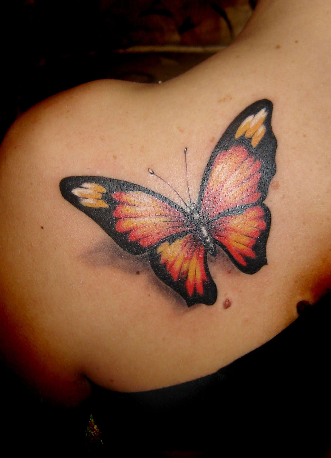 color 3d butterfly tattoo on left back shoulder